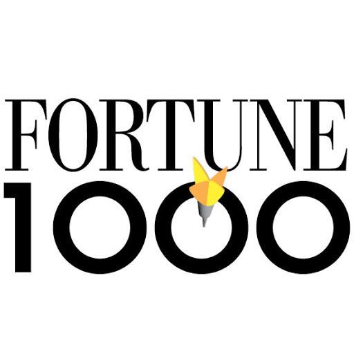 Top Companies in 2021 Fortune 1000